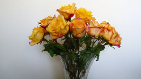 Ваза variegated желтого цвета и красных роз Стоковое фото RF