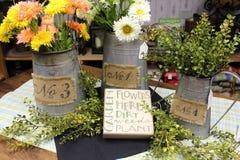 Вазы металла с цветками и травами Стоковое фото RF