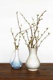 2 вазы с ветвями на таблице Стоковые Фото