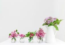 Вазы с розовыми и фиолетовыми цветками весны Стоковое Фото