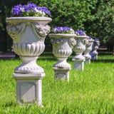 Вазы с цветками в парке Стоковое фото RF