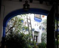 Вазы с цветками и голубыми плитами Стоковая Фотография