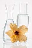 2 вазы с чистой водой и цветком hibiskus Стоковое фото RF