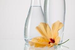 2 вазы с чистой водой и цветком hibiskus Стоковые Фотографии RF