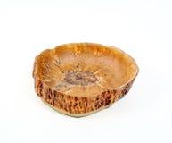 Вазы handmade от древесины Стоковое фото RF
