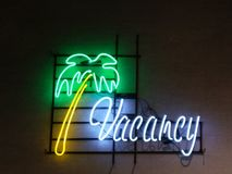 Вакансия и пальма стоковая фотография