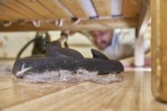Вакуумируя пол под кроватью Стоковые Фото
