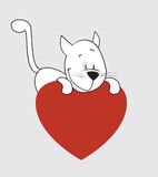 Валентайн дня s кота Стоковое Изображение