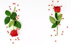 Валентайн дня s Рамка красивые красные розы Стоковые Изображения RF