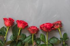 Валентайн карточки s Красные розы на серой предпосылке скопируйте космос Взгляд сверху Стоковые Фото