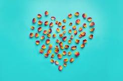 Валентайн карточки s Символ сердца сделанный высушенных роз на голубой предпосылке Взгляд сверху, плоское положение скопируйте ко Стоковые Фото
