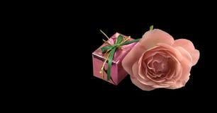 Валентайн подарка цветка розовое Стоковое фото RF