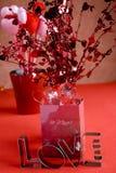 Валентайн подарка Стоковые Фото