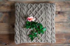 Валик Knit Стоковые Фото