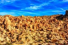 Валуны ставя точки ландшафт пустыни Стоковое Изображение RF