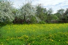 Валы весной Стоковая Фотография RF