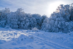 валы гор снежные Стоковые Фотографии RF