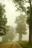 Валы дороги гравия старые тонут в тумане утра Стоковое Изображение RF