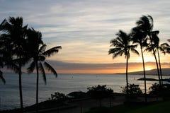 валы захода солнца неба ладони океана Гавайских островов стоковое фото