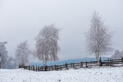 Валы зимы покрытые с hoarfrost стоковая фотография