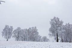 Валы зимы покрытые с hoarfrost стоковое фото rf