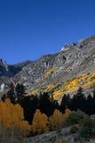Валы и горы Aspen осени Стоковое Изображение RF