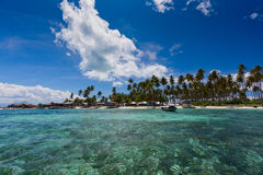 валы кокоса пляжа красивейшие Стоковые Фотографии RF