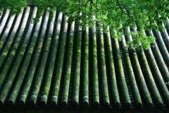 валы крыши отражения Стоковое Изображение RF
