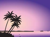 валы моря ладони тропические Стоковое Изображение