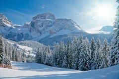 валы наклона горы ели стоковая фотография rf