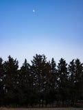 валы ночи луны halloween Стоковое Изображение RF