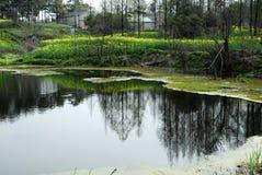 валы озера Стоковые Фото