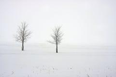 валы поля снежные Стоковое фото RF