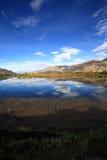 валы реки тополя kyi Стоковые Изображения RF