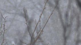 валы снежка вниз видеоматериал