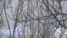 валы снежка вниз сток-видео