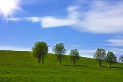 валы холма травы Стоковые Фотографии RF
