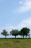 валы стоковое фото rf