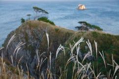 Валы 7 береговой линии Стоковое Фото