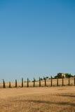 Валы Cypress в Тоскане стоковая фотография rf