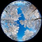 Валы Snowy стоковые изображения rf