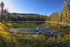 валы stubs выхватов гор сухого озера Стоковая Фотография