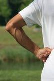 вальма руки Стоковые Изображения
