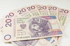 Валюта 20 Польша PLN Стоковая Фотография RF