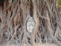 вал Будды головной стоковая фотография rf