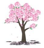 вал весны Стоковое Фото