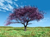 вал вишни Стоковые Изображения