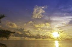 вал Вьетнам захода солнца quoc phu ладони Стоковые Фото