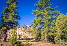 Вал в каньоне Bryce стоковая фотография rf