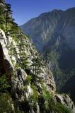 вал горы Стоковые Фотографии RF